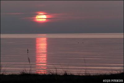 Saullēkts Kolkā