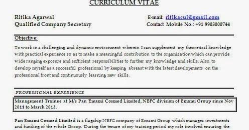 Curriculum Vitae Format Download Pdf