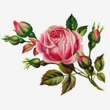سكرابز للتصاميم rose.jpg
