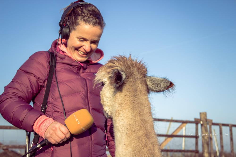 Patricia Pantel beim Interview mit einem Alpaka