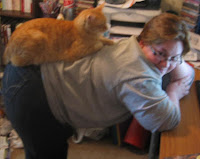 Orange cat perched on author's back, with author bent over at hips with short hair, glasses, grey long sleeved shirt, and jeans, leaning on desk