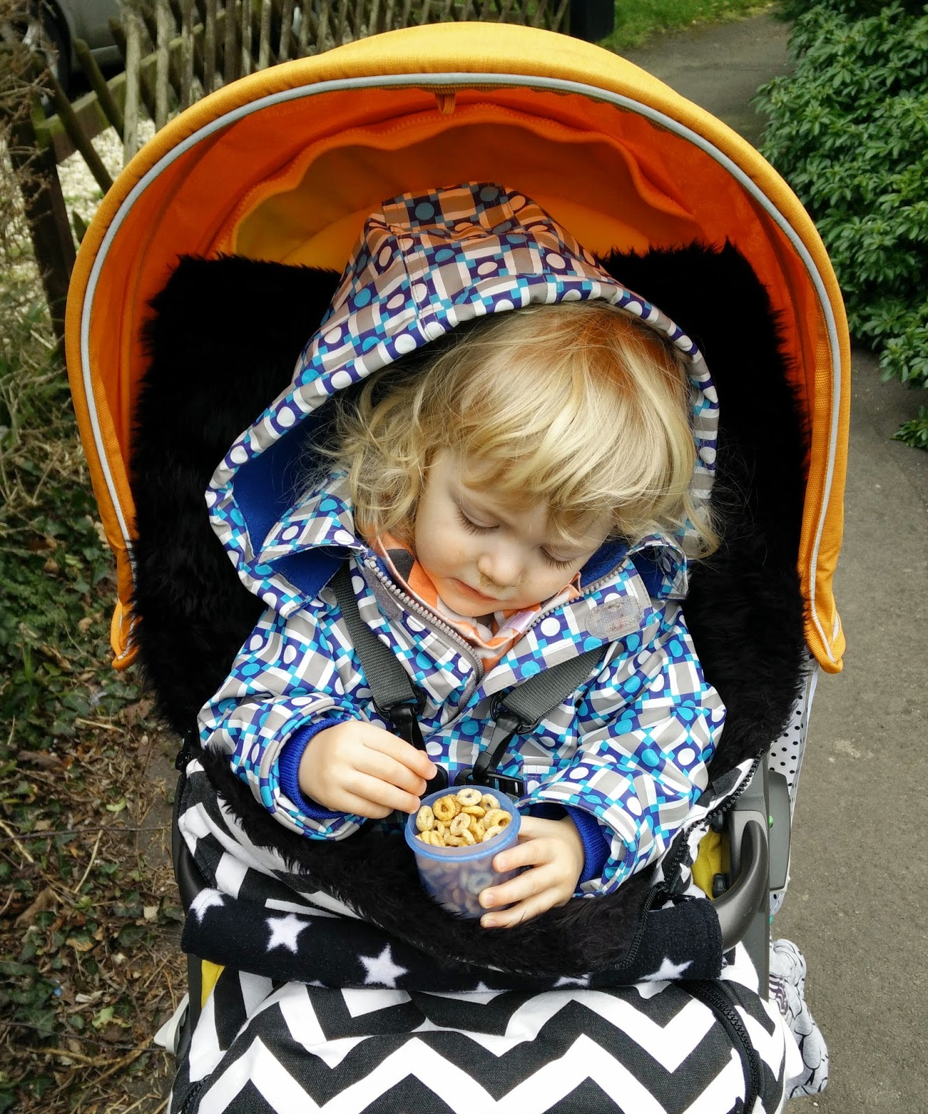 Brights and Stripes, Coats for toddlers, Stokke Xplory