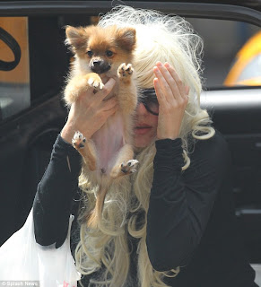 Amanda Bynes got a visit from her dog in hospital