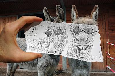 due-asini-foto-e-disegno