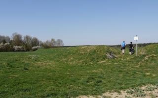 Südwestecke Keltenschanze Buchendorf mit Zugang aus neuerer Zeit