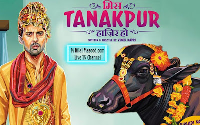 Miss Tanakpur Haazir Ho (2015) – Watch Hindi Movie Online And Download Freewwwbilallivetv.blogspot.com