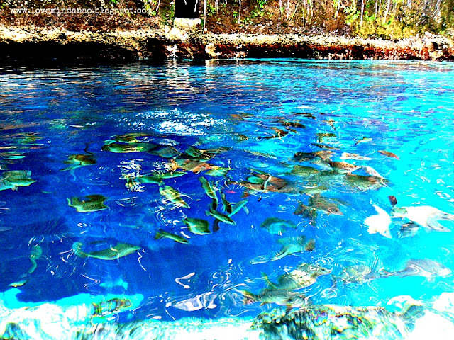 Be Dazzled by the Enchanted River