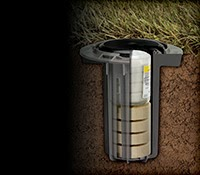 BASF announces a new termite product