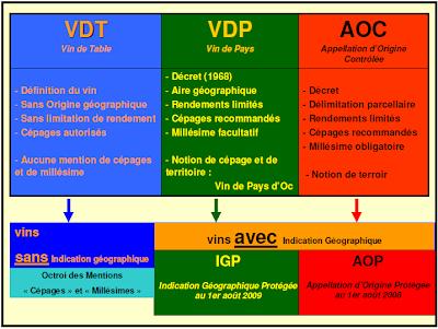 A Reforma OCM (Organização Comum do Mercado Vitivinícola)