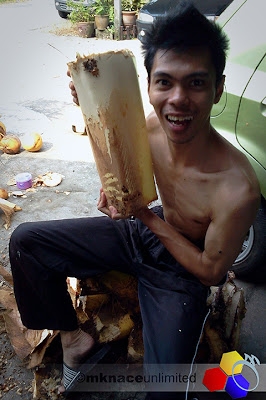 mknace unlimited | proses umbut kelapa