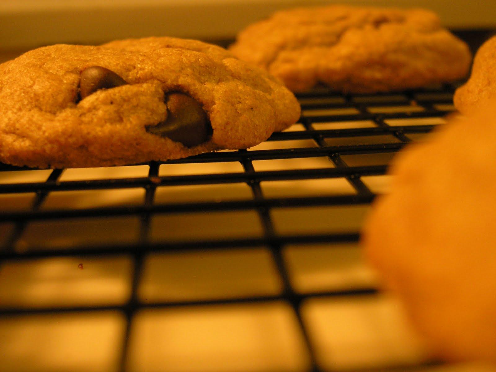 La panadera desnuda smitten kitchen 39 s crispy chewy for Smitten kitchen chocolate chip cookies