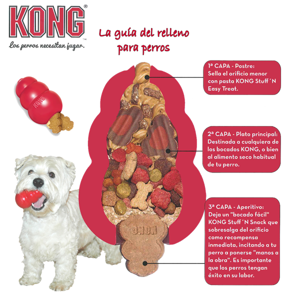 Frozen Kong Dog Toy