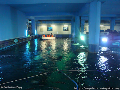 Siam Ocean World Glass Bottom Boat Ride Photo 1