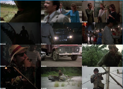 Missing In Action (1984) BluRay 720p 800MB