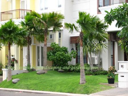 gambar depan rumah minimalis on Membuat Taman di Rumah, Rileks dan 'Hijau' | Rumah Saya