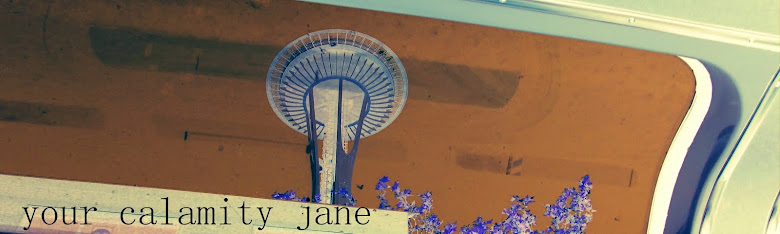 your calamity jane