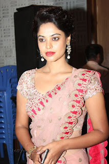 Actress Bindu Madhavi Saree Picture Stills 001.jpg