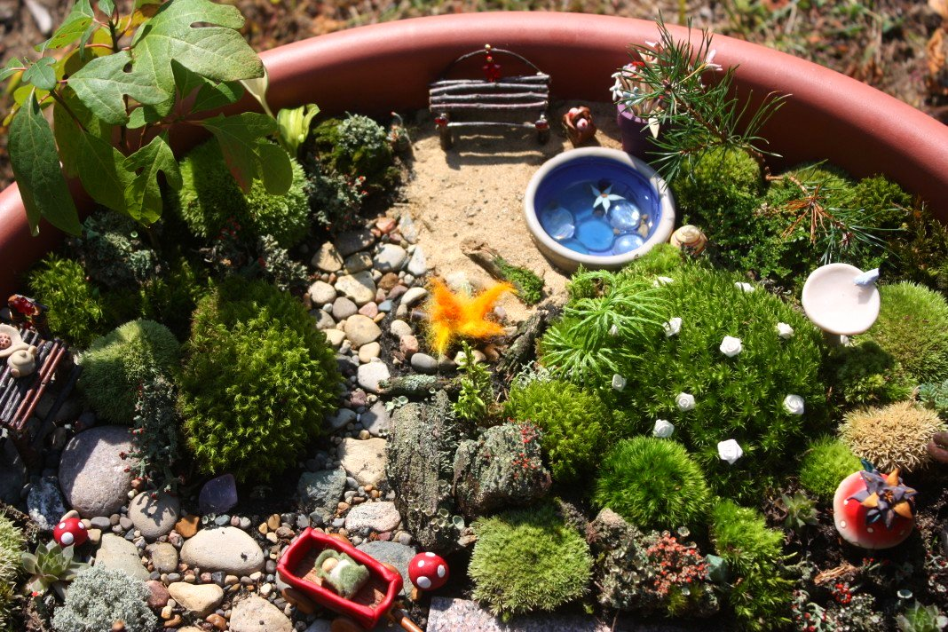 Juise Our Fairy Garden A Tour