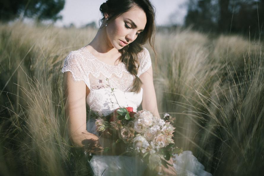 anna campbell bridal dresses
