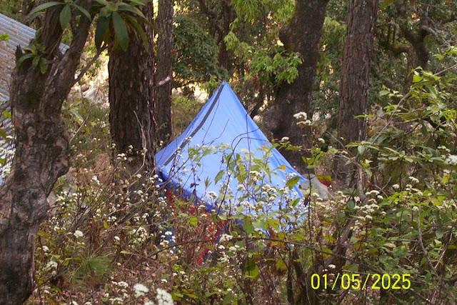 camping in jungle kausani