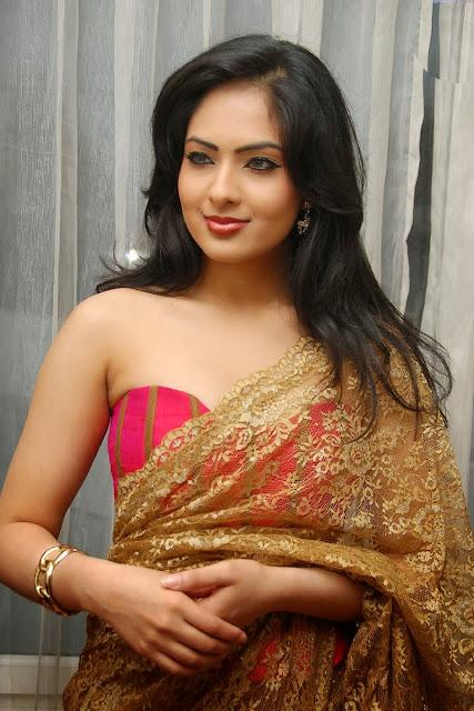Nikesha Patel In Modern Saree