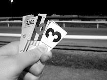 100% Free Racing Tips