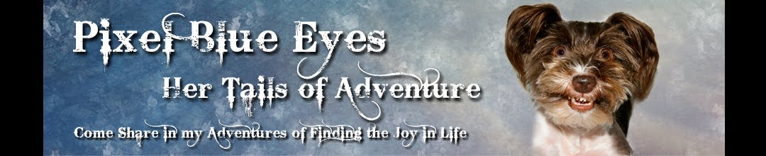 "Pixel Blue Eyes - Her ""Tails of Adventure"""