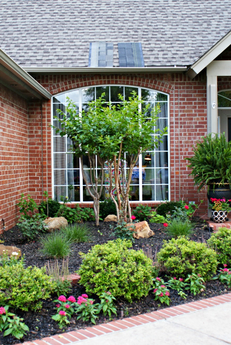Front yard landscaping dimples and tangles for Outdoor front yard landscaping