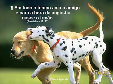 Amigos.. para Sempre!