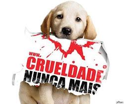 Vamos deunciar os maus-tratos, vamos exigir leis mais severas e fazer a justiça pelos animais!