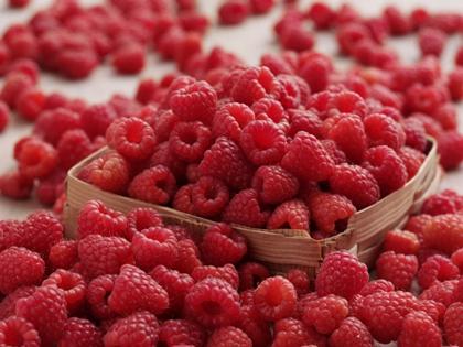 ราสเบอร์รี่คีโตน (Raspberry Ketones) @ www.healthydietadvisor.com