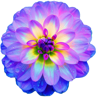 what color is your parachute THE FLOWER