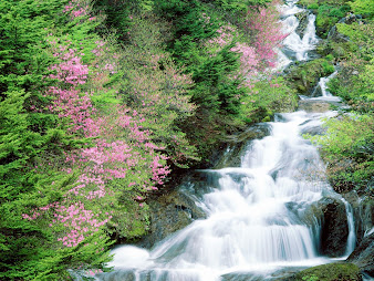 #5 Waterfall Wallpaper