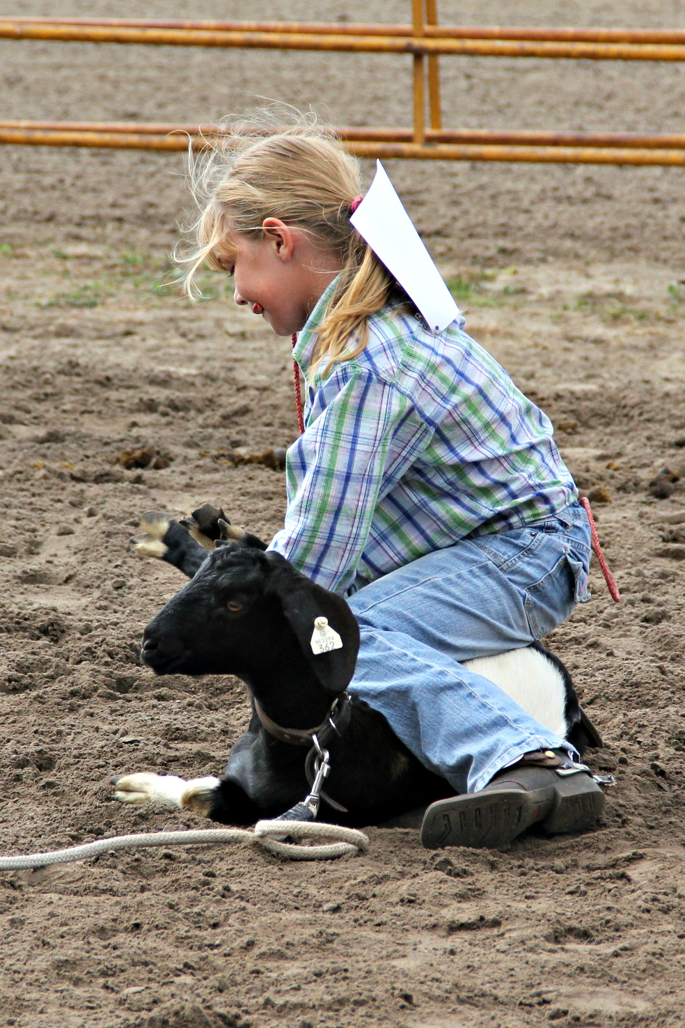 Rodeo Family: Burwell Jr. Rodeo