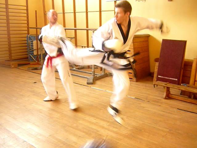 commande ceinture noire kyokushin japon