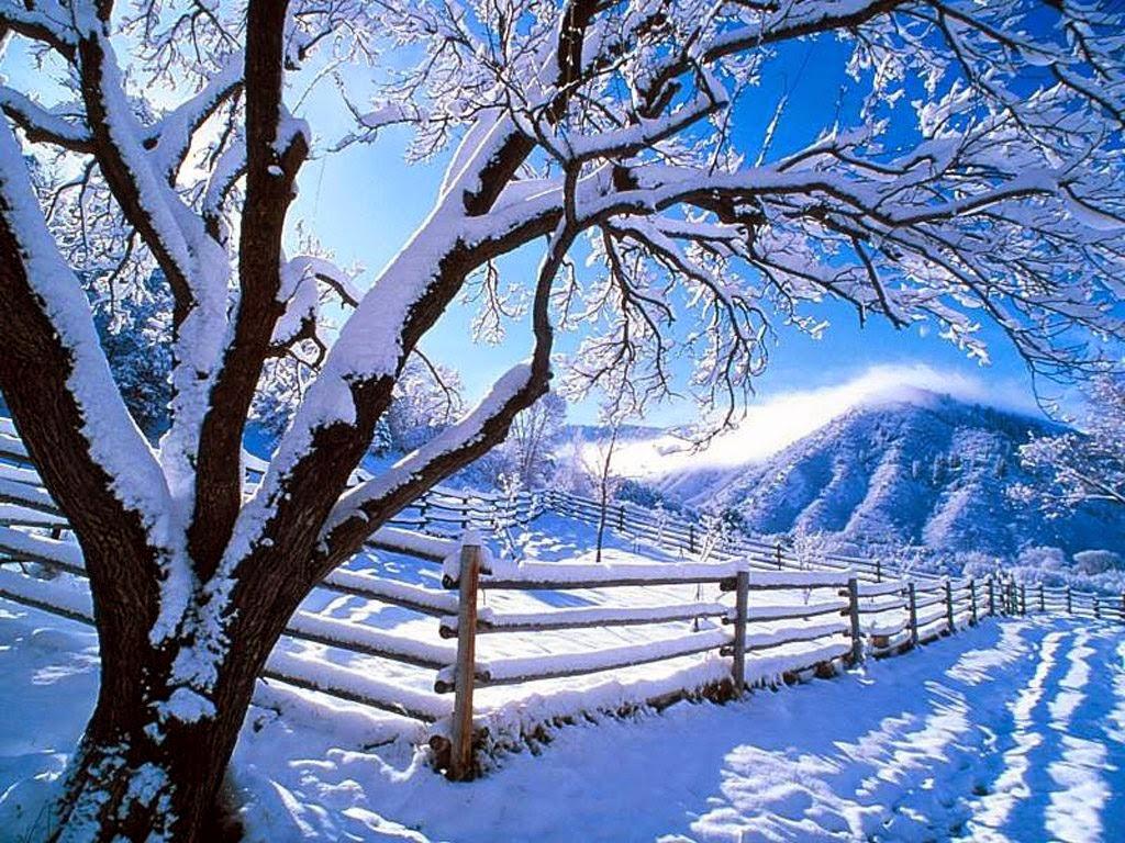Arti Mimpi Salju