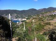 Cinque Terre Day 2: Hiking the Sentiero Azzurro (cinque terre hike vinyards)