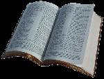 Estudios Libro por Libro del Nuevo Testamento