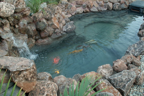 Make your garden looks amazing by constructing fish ponds for How to clean a fish pond