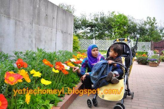 http://4.bp.blogspot.com/-KpUw9zo7P4k/TeXgRGb4qOI/AAAAAAAALGc/jTWIO06dOcc/s1600/daffodil.jpg