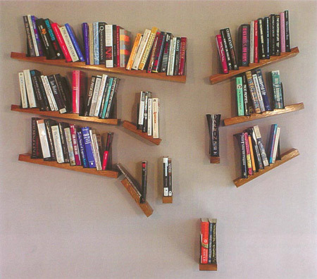 unusual and weird bookshelves - Weird Bookshelves