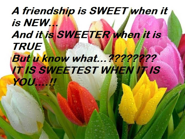Friendship Is SWEET