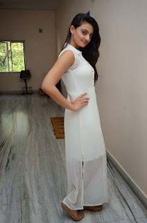 Actress Nikitha Narayan Picture Gallery in White Dress at Ladies and Gentleman Movie Press Meet 1.JPG