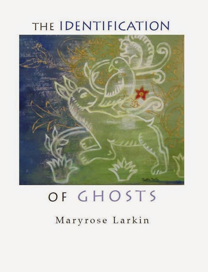 The Identification of Ghosts