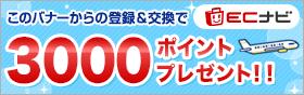 ECナビの入会バナー(300円分がもらえます)