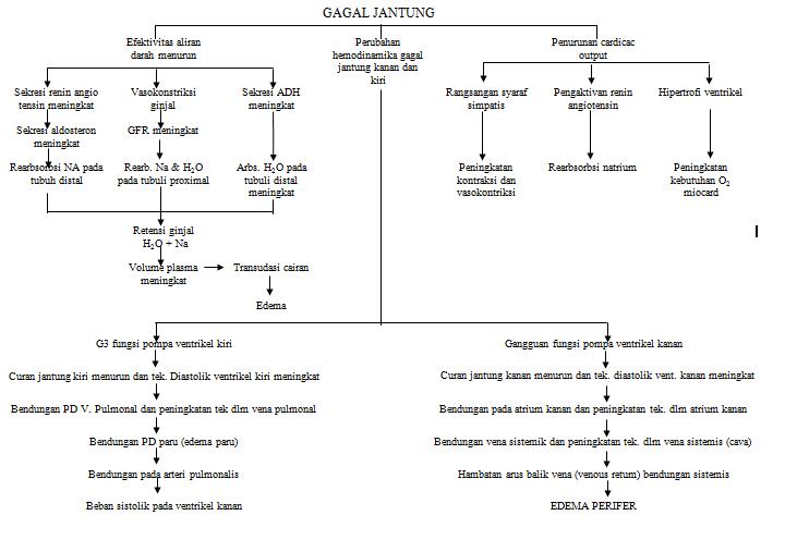 Patofisiologi Gagal Jantung