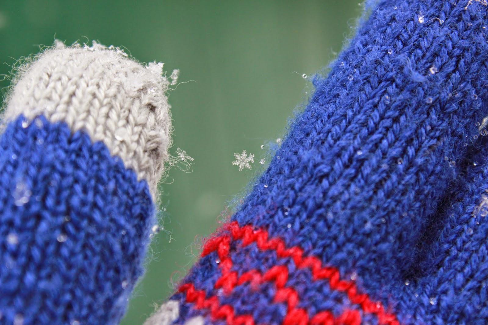 Зима по расписанию