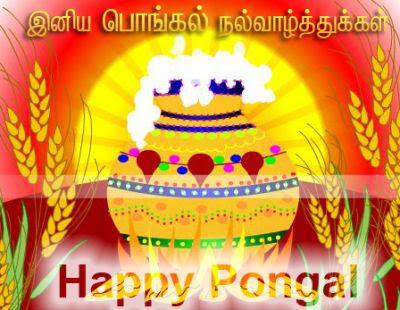 best pongal images