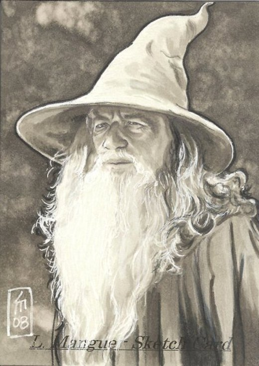Gandalf the Grey - Full Beard por OMangueOTangue