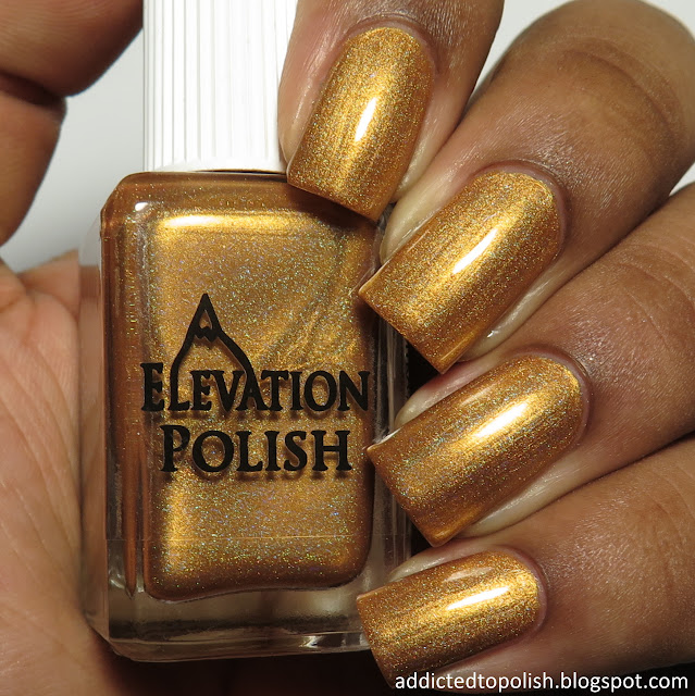 elevation polish zhenjin marco polo